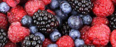 Faire des fruits secs